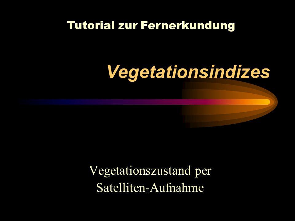 Vegetationsindizes Vegetationszustand per Satelliten-Aufnahme Tutorial zur Fernerkundung