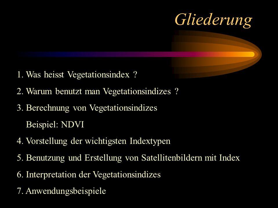 Gliederung 1. Was heisst Vegetationsindex ? 2. Warum benutzt man Vegetationsindizes ? 3. Berechnung von Vegetationsindizes Beispiel: NDVI 4. Vorstellu