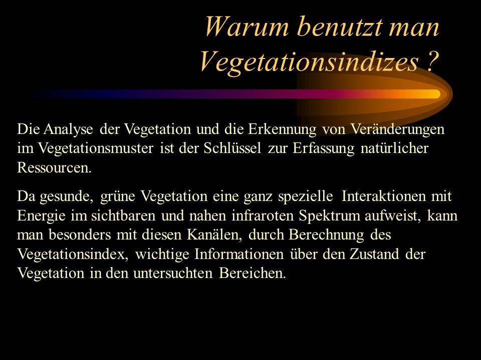 Warum benutzt man Vegetationsindizes ? Die Analyse der Vegetation und die Erkennung von Veränderungen im Vegetationsmuster ist der Schlüssel zur Erfas