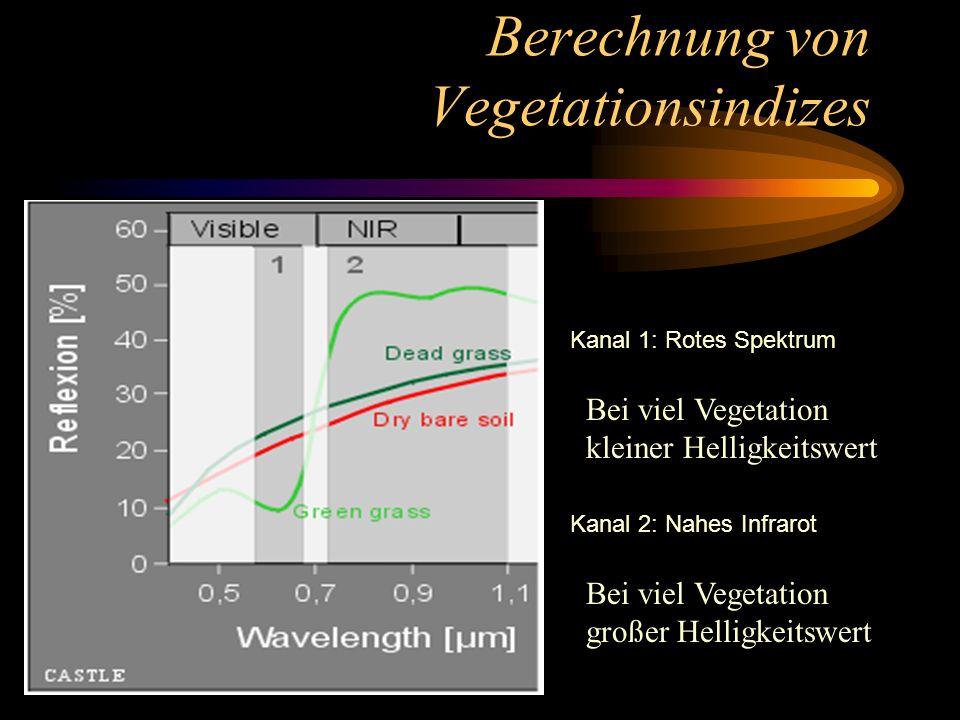 Berechnung von Vegetationsindizes Kanal 1: Rotes Spektrum Kanal 2: Nahes Infrarot Bei viel Vegetation kleiner Helligkeitswert Bei viel Vegetation groß