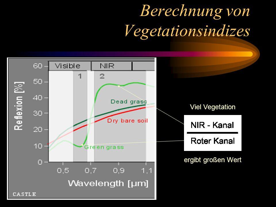 Berechnung von Vegetationsindizes Viel Vegetation ergibt großen Wert