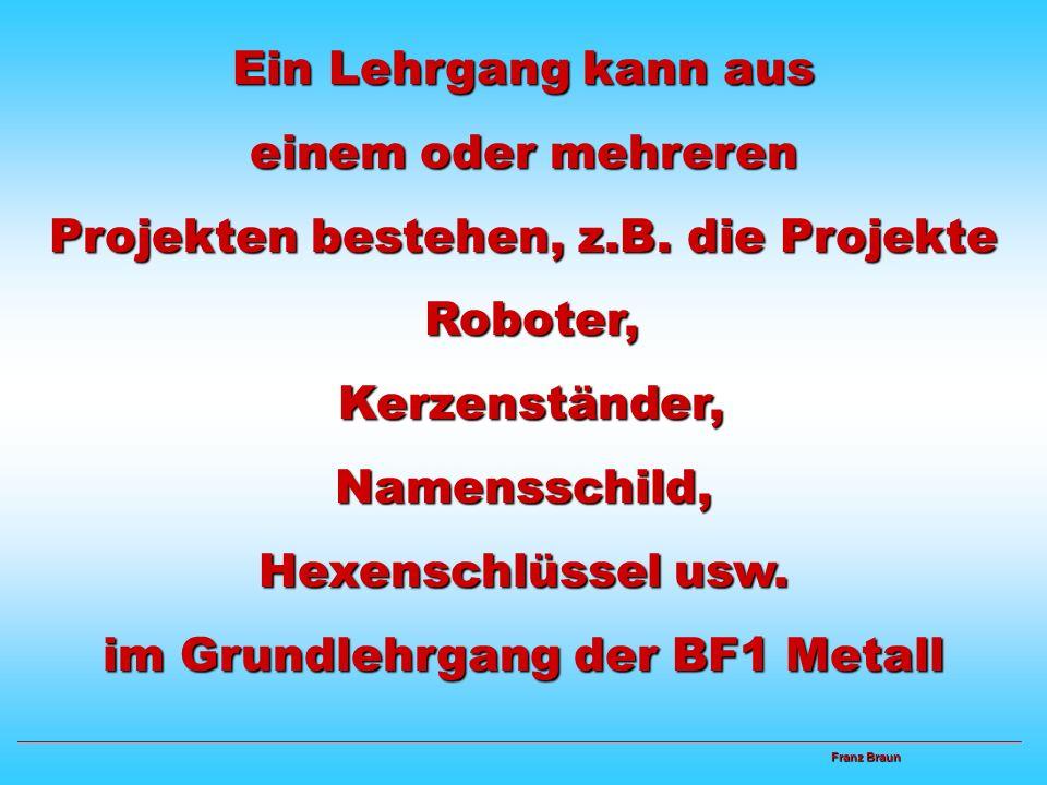 Didaktisch - methodische Überlegungen Bei der Kombination von Projekt und Lehrgang gibt es mehrere Möglichkeiten. Franz Braun Franz Braun