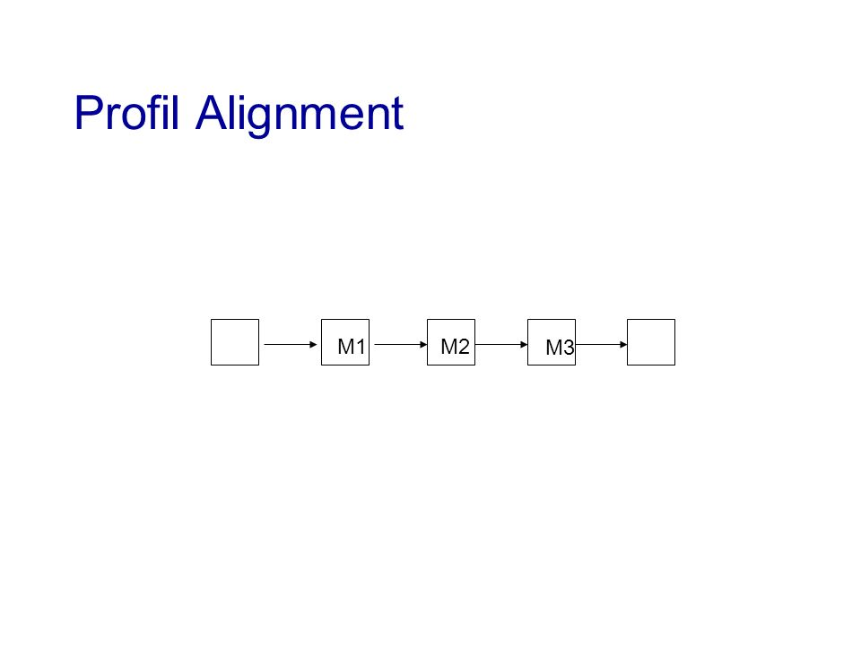 Profil Alignment M1M2 M3
