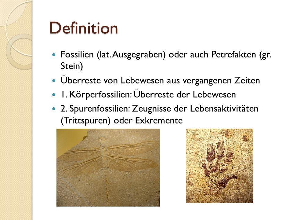Definition Fossilien (lat. Ausgegraben) oder auch Petrefakten (gr. Stein) Überreste von Lebewesen aus vergangenen Zeiten 1. Körperfossilien: Überreste