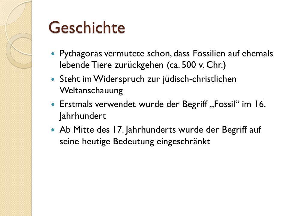 Würzburger Lügensteine Bartholomäus Beringer veröffentlichte 1726 die Lithographiae Wirceburgensis In diesem Buch wurden 204 Figurensteine abgebildet Es handelte sich hierbei jedoch um gefälschte Fossilien aus Würzburger Muschelkalk Der berühmteste Fall von Fossilienfälschung der Geschichte