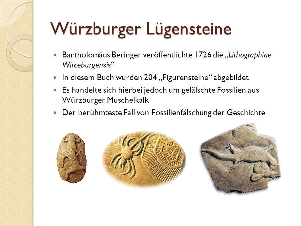 Würzburger Lügensteine Bartholomäus Beringer veröffentlichte 1726 die Lithographiae Wirceburgensis In diesem Buch wurden 204 Figurensteine abgebildet