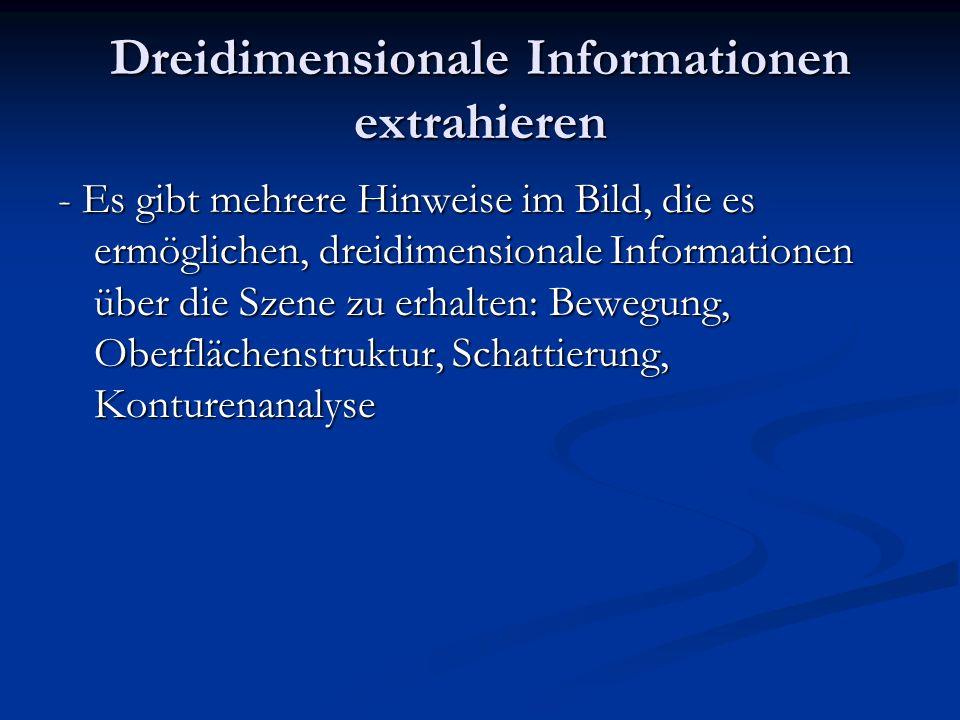 Dreidimensionale Informationen extrahieren - Es gibt mehrere Hinweise im Bild, die es ermöglichen, dreidimensionale Informationen über die Szene zu er