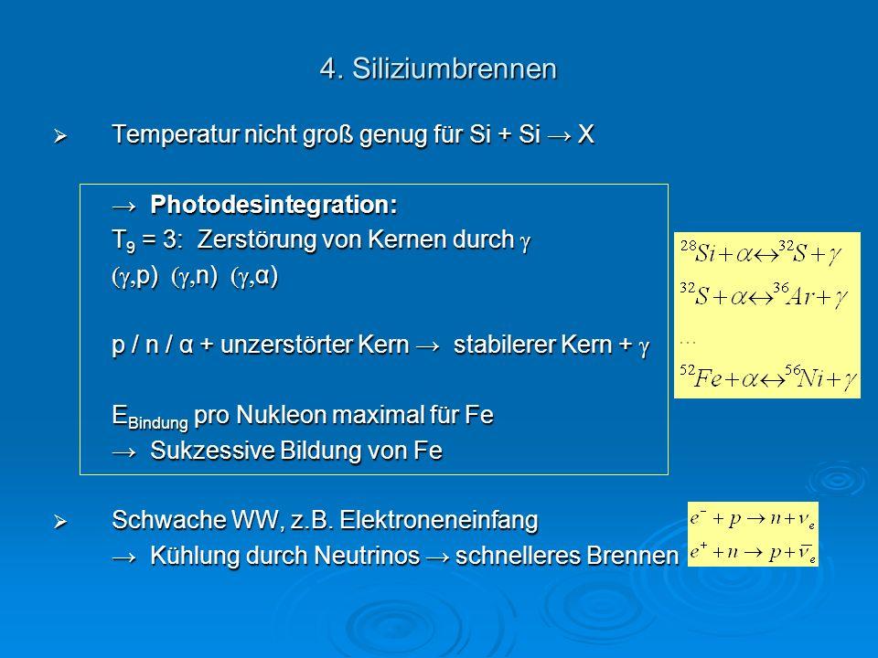 4. Siliziumbrennen Temperatur nicht groß genug für Si + Si X Temperatur nicht groß genug für Si + Si X Photodesintegration: Photodesintegration: T 9 =