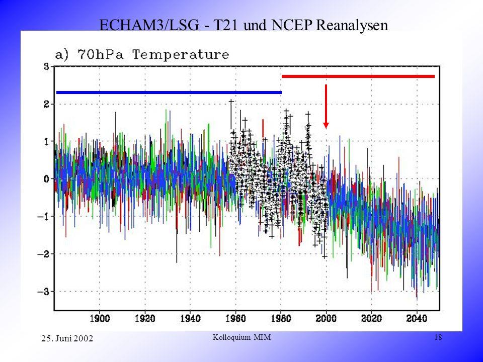 25. Juni 2002 Kolloquium MIM18 ECHAM3/LSG - T21 und NCEP Reanalysen
