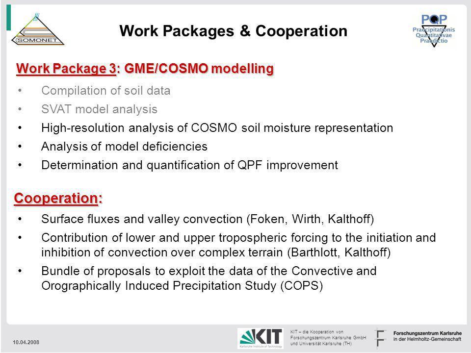 10.04.2008 KIT – die Kooperation von Forschungszentrum Karlsruhe GmbH und Universität Karlsruhe (TH) Work Package 3: GME/COSMO modelling Compilation o
