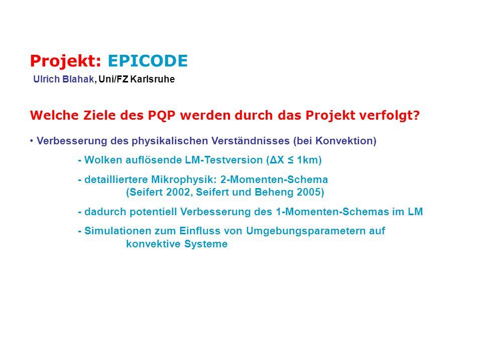 Wie ist die Perspektive des Projekts für die Gesamtlaufzeit des SPP.