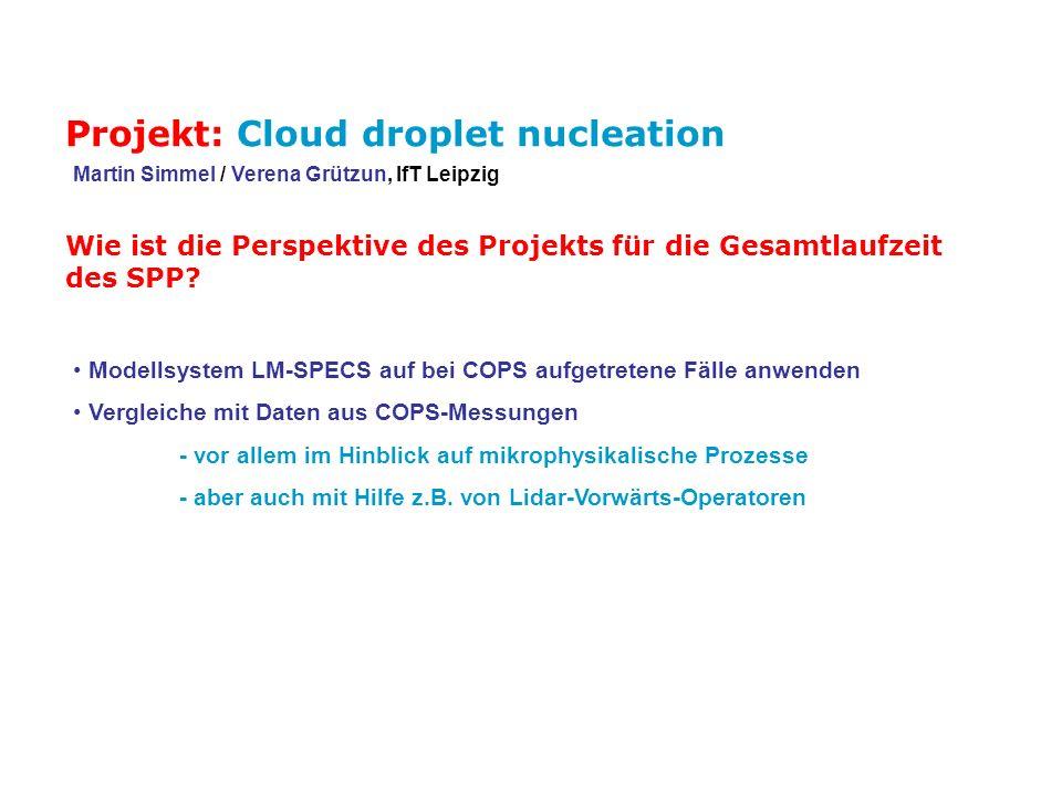 Wie ist die Perspektive des Projekts für die Gesamtlaufzeit des SPP? Modellsystem LM-SPECS auf bei COPS aufgetretene Fälle anwenden Vergleiche mit Dat