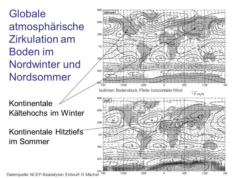 Isolinien: Bodendruck; Pfeile: horizontaler Wind Datenquelle: NCEP-Reanalysen; Entwurf: H. Mächel Kontinentale Kältehochs im Winter Kontinentale Hitzt