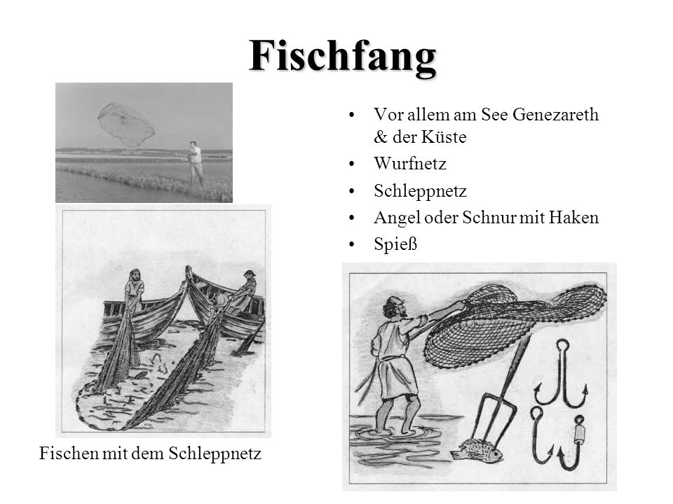 Fischfang Vor allem am See Genezareth & der Küste Wurfnetz Schleppnetz Angel oder Schnur mit Haken Spieß Fischen mit dem Schleppnetz