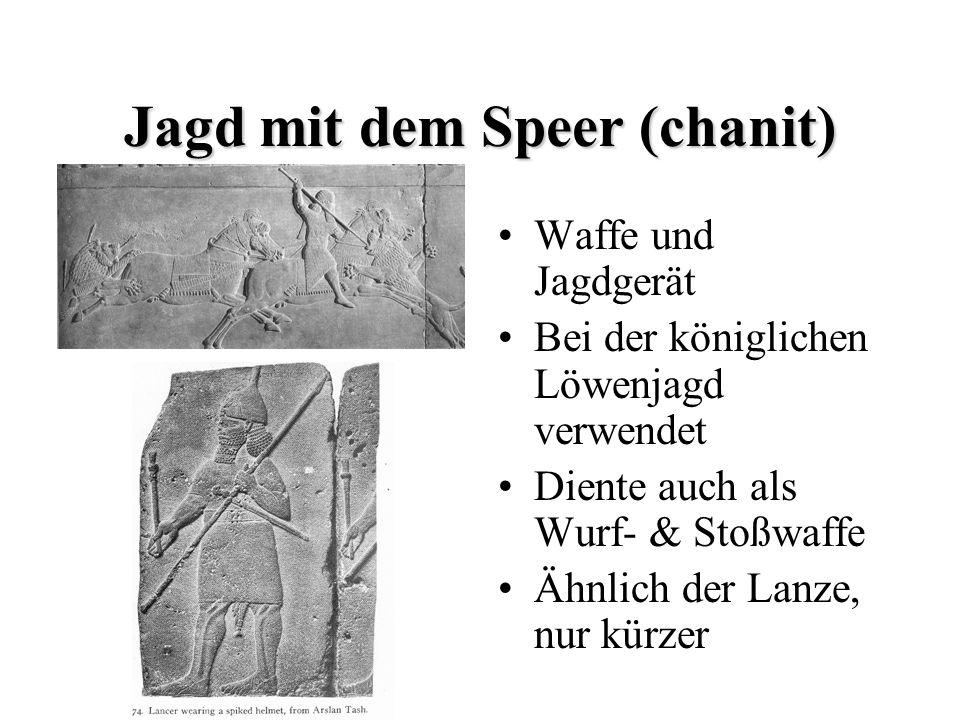 Jagd mit dem Speer (chanit) Waffe und Jagdgerät Bei der königlichen Löwenjagd verwendet Diente auch als Wurf- & Stoßwaffe Ähnlich der Lanze, nur kürze