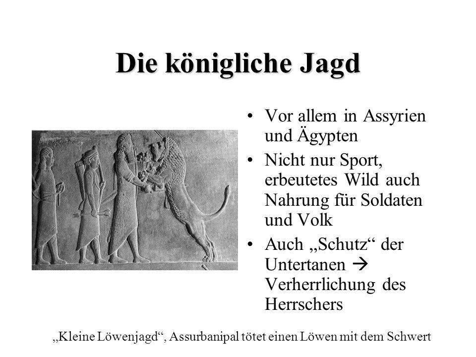 Die königliche Jagd Vor allem in Assyrien und Ägypten Nicht nur Sport, erbeutetes Wild auch Nahrung für Soldaten und Volk Auch Schutz der Untertanen V