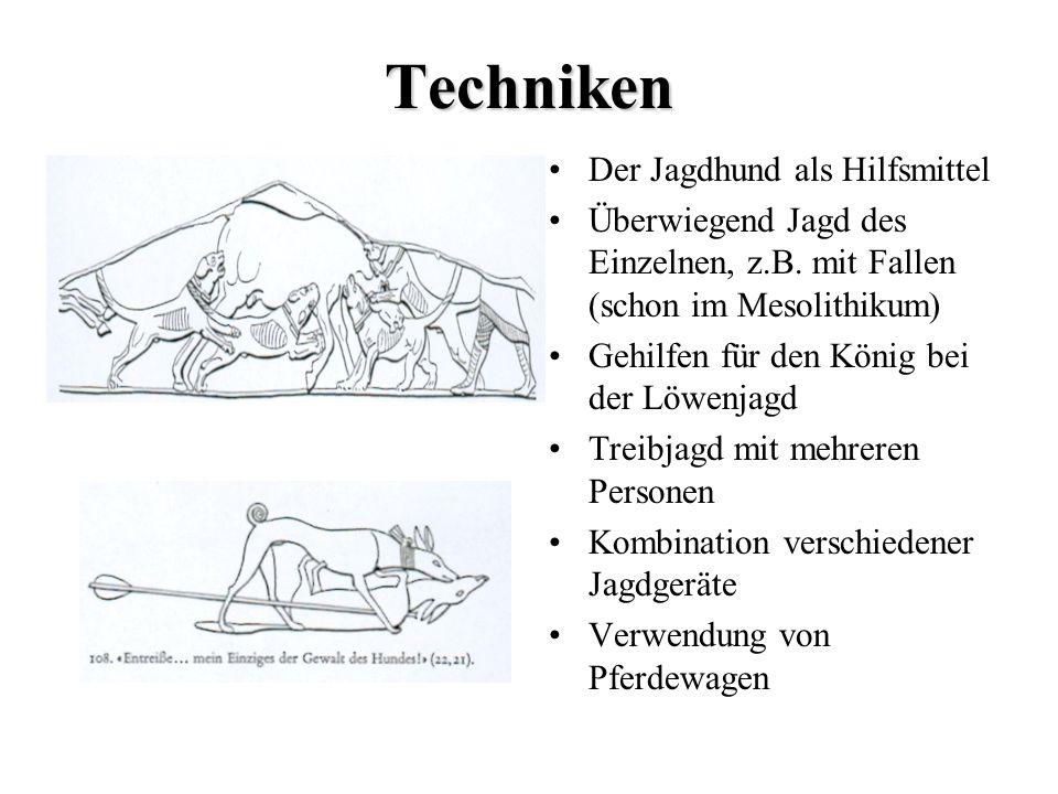 Techniken Der Jagdhund als Hilfsmittel Überwiegend Jagd des Einzelnen, z.B. mit Fallen (schon im Mesolithikum) Gehilfen für den König bei der Löwenjag