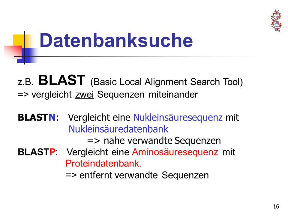 16 Datenbanksuche z.B. BLAST (Basic Local Alignment Search Tool) => vergleicht zwei Sequenzen miteinander BLASTN: Vergleicht eine Nukleinsäuresequenz