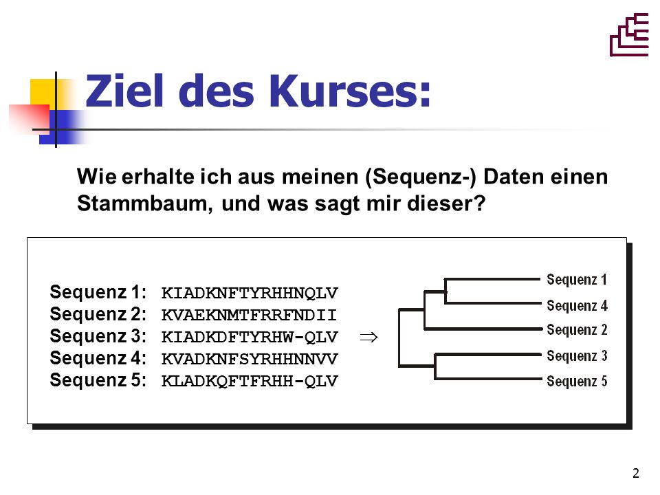 2 Wie erhalte ich aus meinen (Sequenz-) Daten einen Stammbaum, und was sagt mir dieser? Sequenz 1: KIADKNFTYRHHNQLV Sequenz 2: KVAEKNMTFRRFNDII Sequen