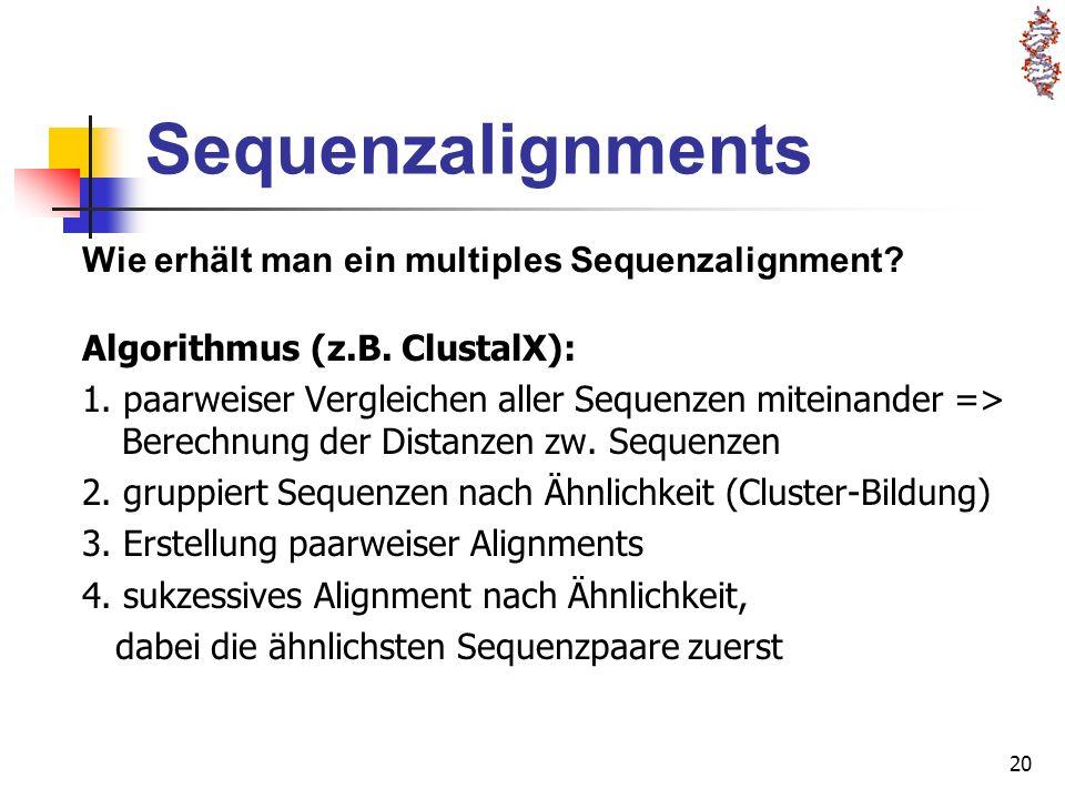 20 Sequenzalignments Algorithmus (z.B. ClustalX): 1. paarweiser Vergleichen aller Sequenzen miteinander => Berechnung der Distanzen zw. Sequenzen 2. g