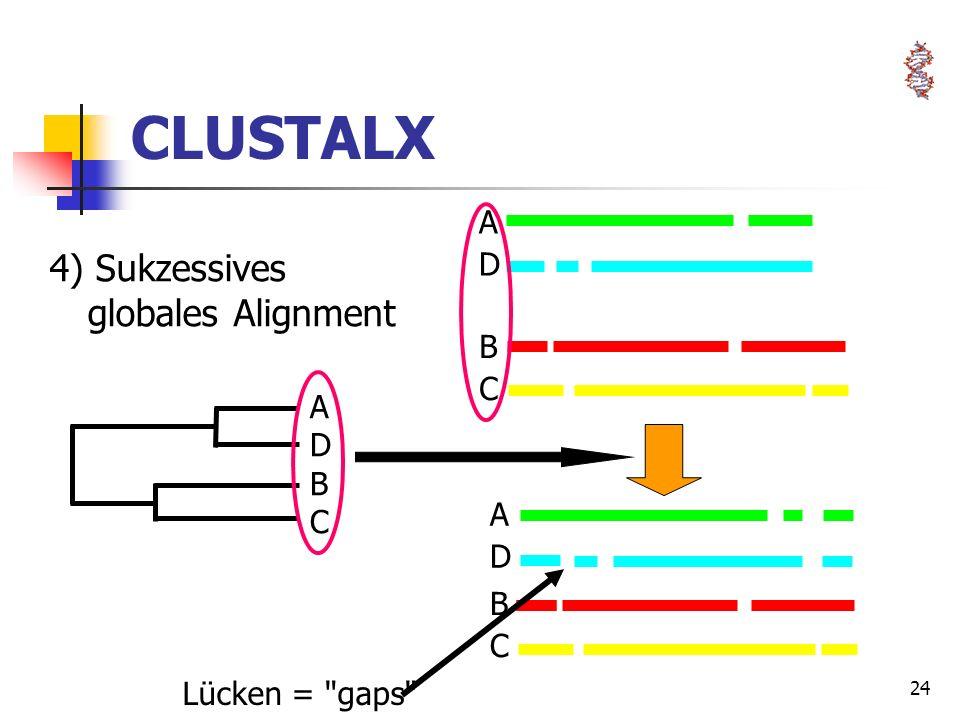 24 BCBC ADAD ADAD BCBC ADBCADBC CLUSTALX 4) Sukzessives globales Alignment Lücken =