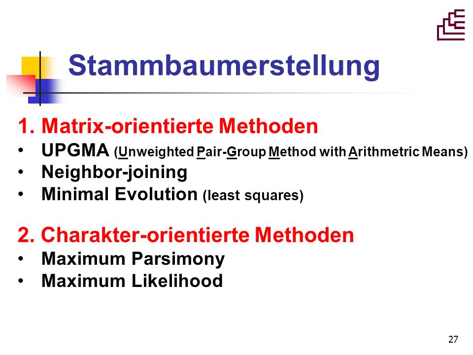 27 Stammbaumerstellung 1.Matrix-orientierte Methoden UPGMA (Unweighted Pair-Group Method with Arithmetric Means) Neighbor-joining Minimal Evolution (l