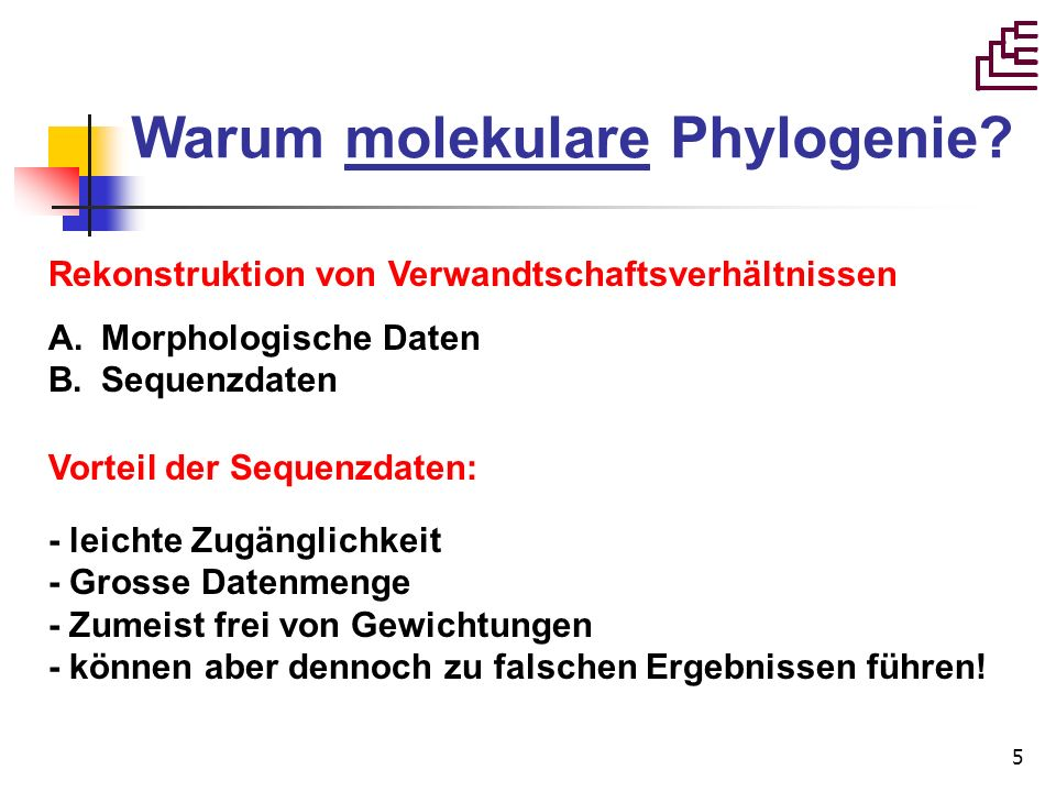 6 Voraussetzungen der molekularen Phylogenie 1.Evolution vollzieht sich durch Veränderungen.