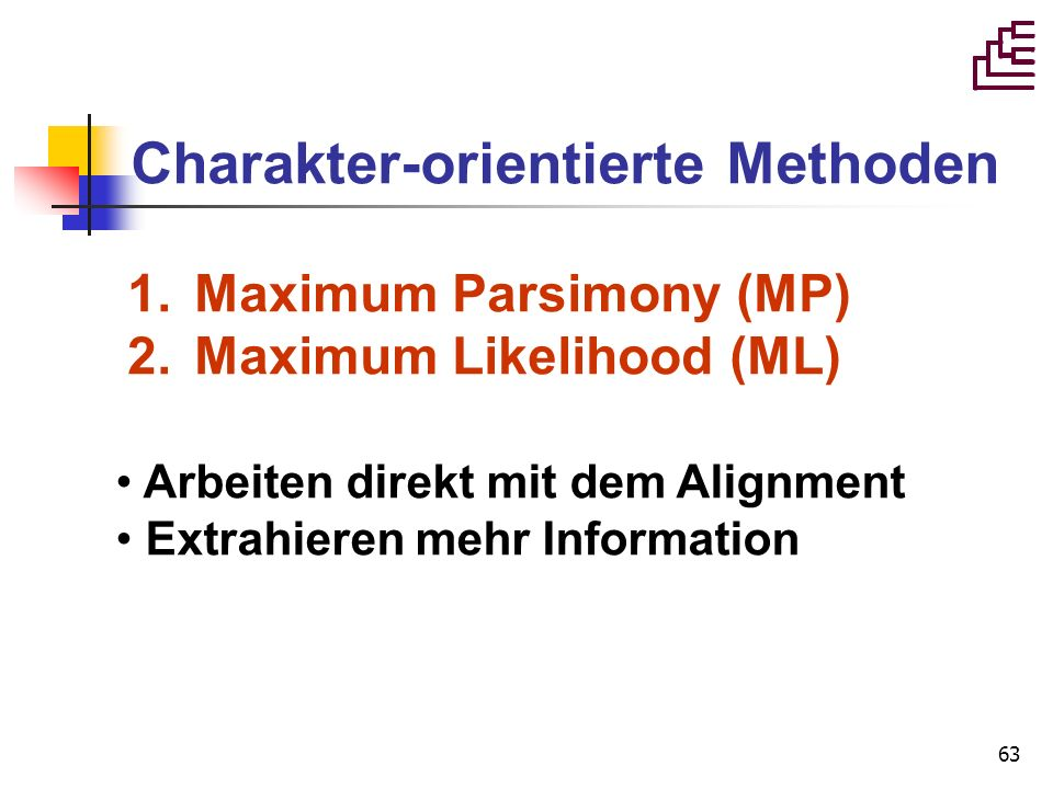 63 Charakter-orientierte Methoden 1. Maximum Parsimony (MP) 2. Maximum Likelihood (ML) Arbeiten direkt mit dem Alignment Extrahieren mehr Information