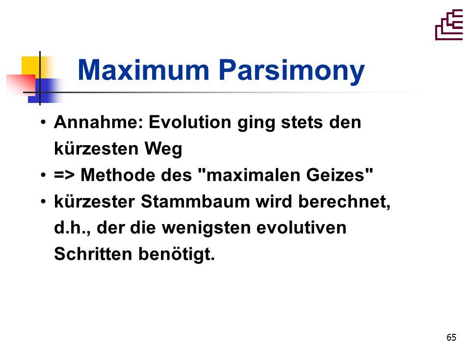 65 Maximum Parsimony Annahme: Evolution ging stets den kürzesten Weg => Methode des