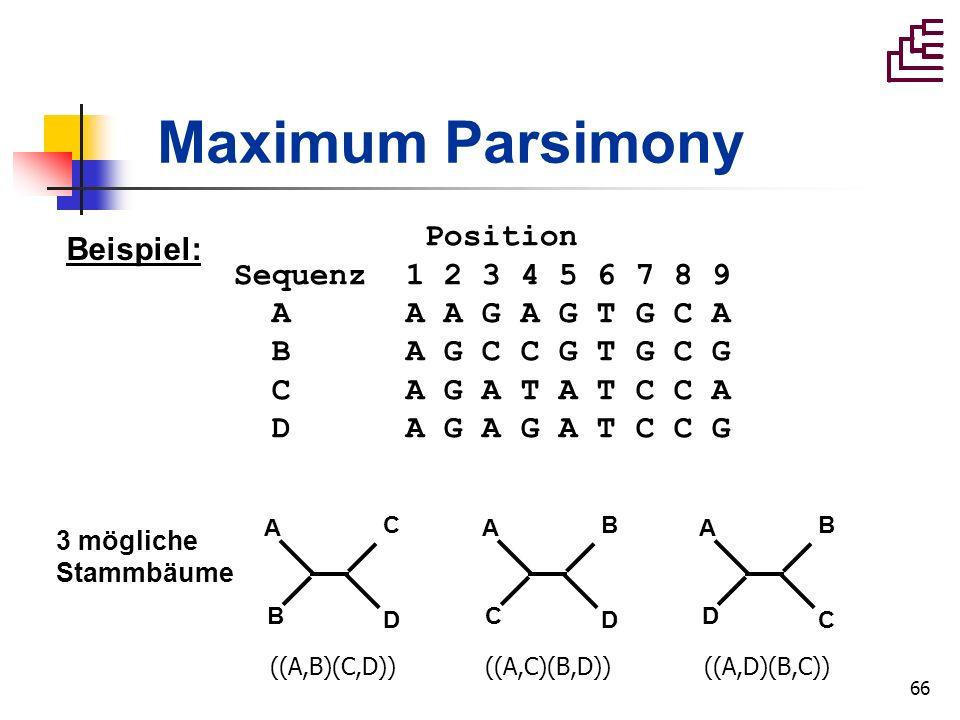 66 Maximum Parsimony Position Sequenz 1 2 3 4 5 6 7 8 9 A A A G A G T G C A B A G C C G T G C G C A G A T A T C C A D A G A G A T C C G Beispiel: A B