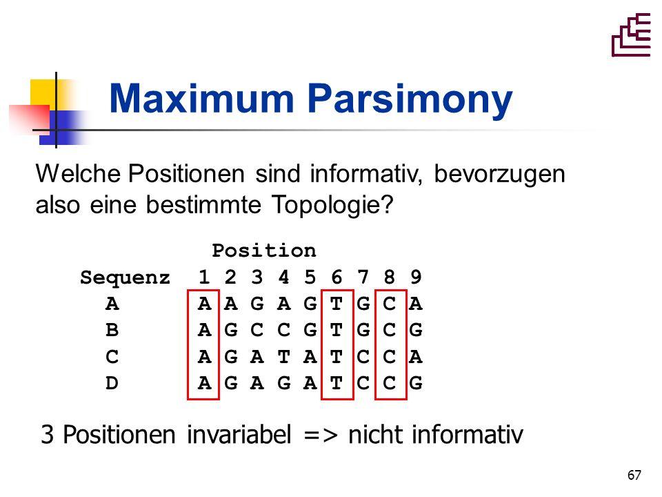 67 Maximum Parsimony Position Sequenz 1 2 3 4 5 6 7 8 9 A A A G A G T G C A B A G C C G T G C G C A G A T A T C C A D A G A G A T C C G 3 Positionen i