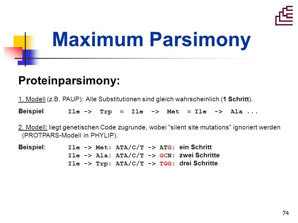 74 Proteinparsimony: 1. Modell (z.B. PAUP): Alle Substitutionen sind gleich wahrscheinlich (1 Schritt). Beispiel Ile -> Trp Ile -> Met Ile -> Ala... 2