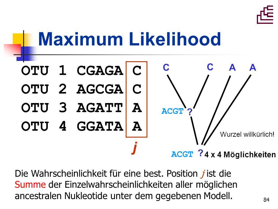 84 Maximum Likelihood OTU 1 CGAGA C OTU 2 AGCGA C OTU 3 AGATT A OTU 4 GGATA A j ACGT ? ? C C AA 4 x 4 Möglichkeiten Wurzel willkürlich! Die Wahrschein