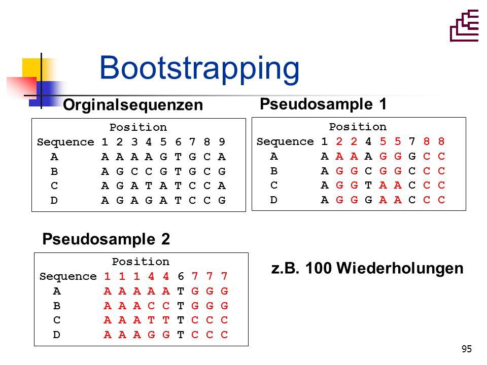 95 Bootstrapping Position Sequence 1 2 3 4 5 6 7 8 9 A A A A A G T G C A B A G C C G T G C G C A G A T A T C C A D A G A G A T C C G Orginalsequenzen