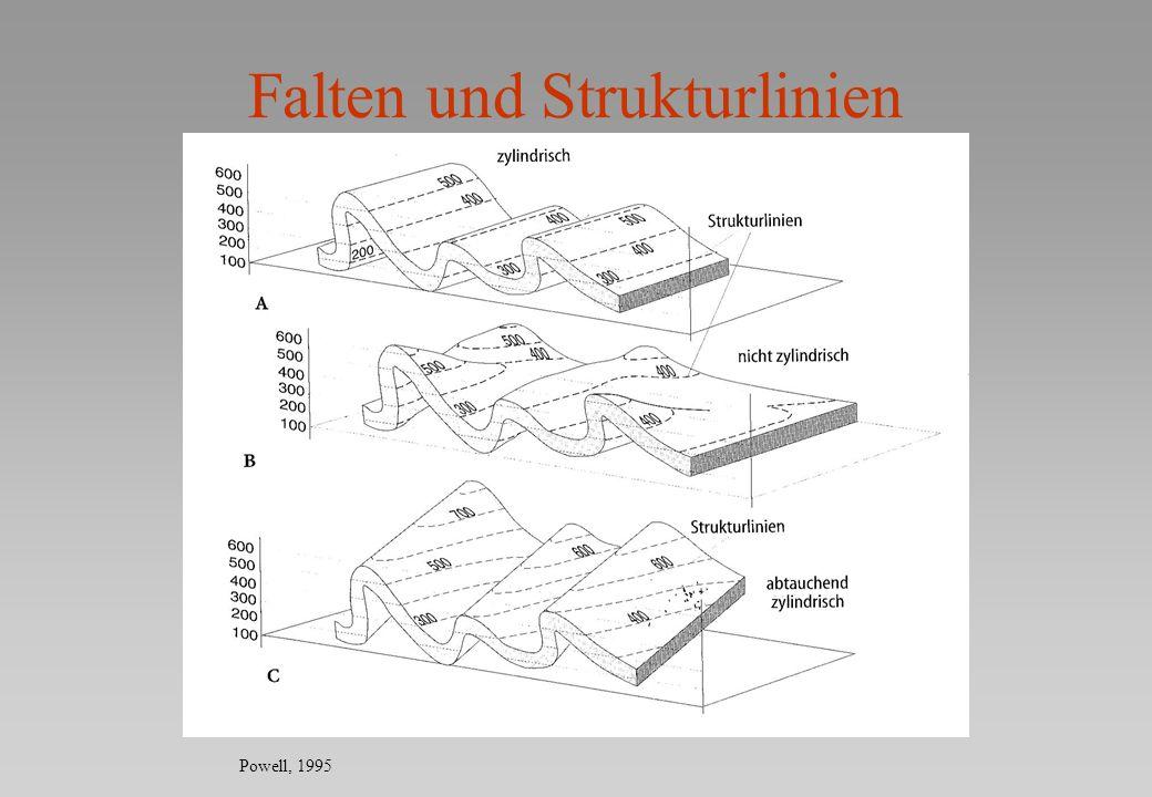 Falten und Strukturlinien Powell, 1995