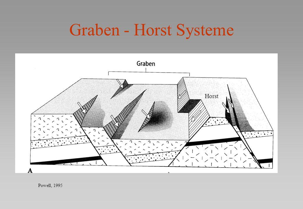 Graben - Horst Systeme Powell, 1995 Horst