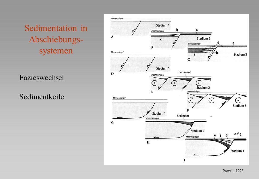 Sedimentation in Abschiebungs- systemen Fazieswechsel Sedimentkeile Powell, 1995