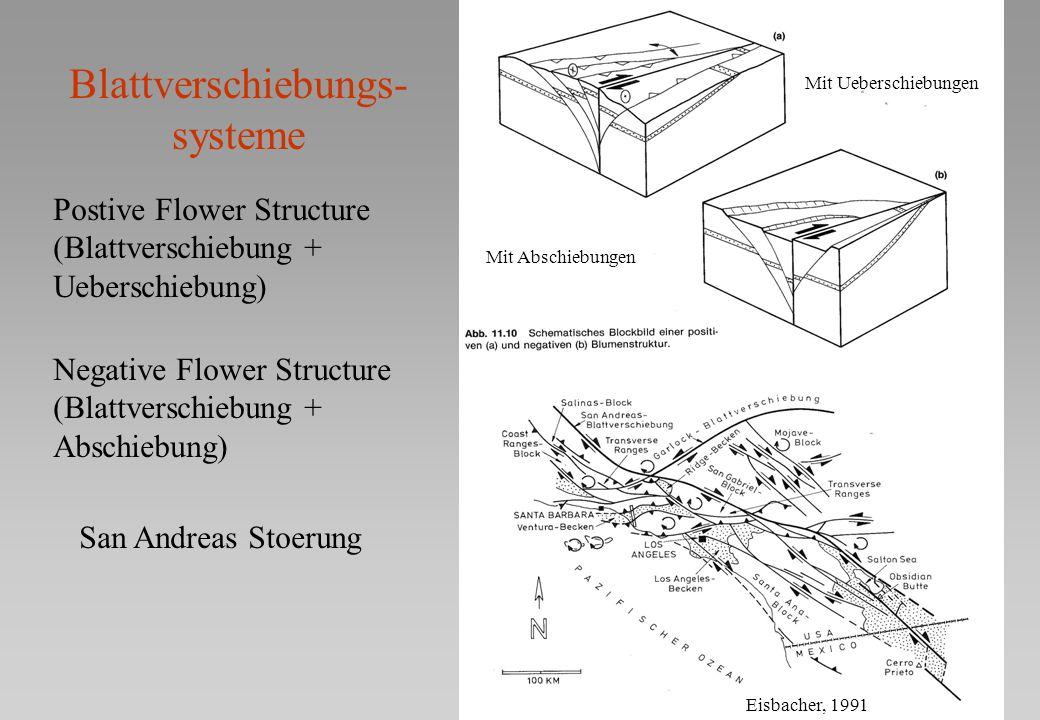 Blattverschiebungs- systeme San Andreas Stoerung Mit Ueberschiebungen Mit Abschiebungen Postive Flower Structure (Blattverschiebung + Ueberschiebung)