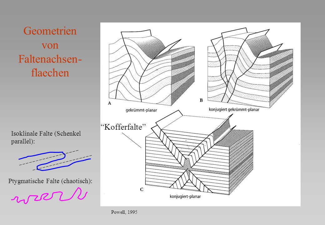 Methoden der Faltenkonstruktion Profil Konzentrische Falten Kongruente Falten Eisbacher, 1991 Maechtigkeit konstant Kruemmung variiert Maechtigkeit variiert Keine Kruemmung