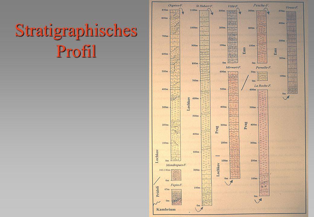 Stratigraphisches Profil