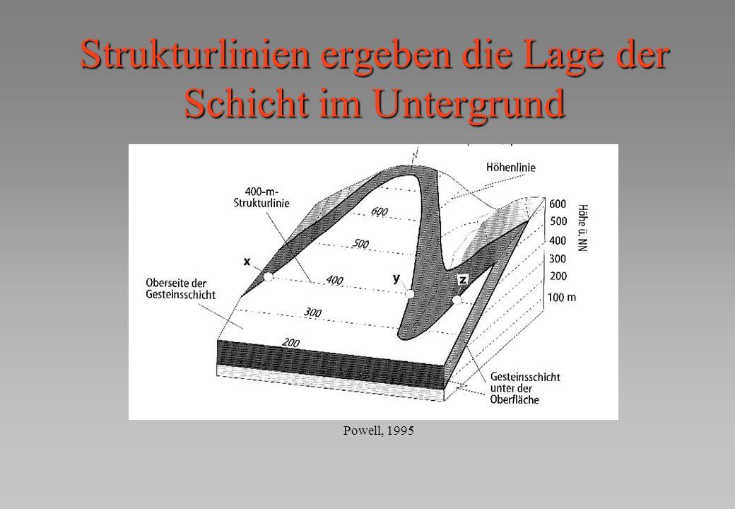 Strukturlinien ergeben die Lage der Schicht im Untergrund Powell, 1995