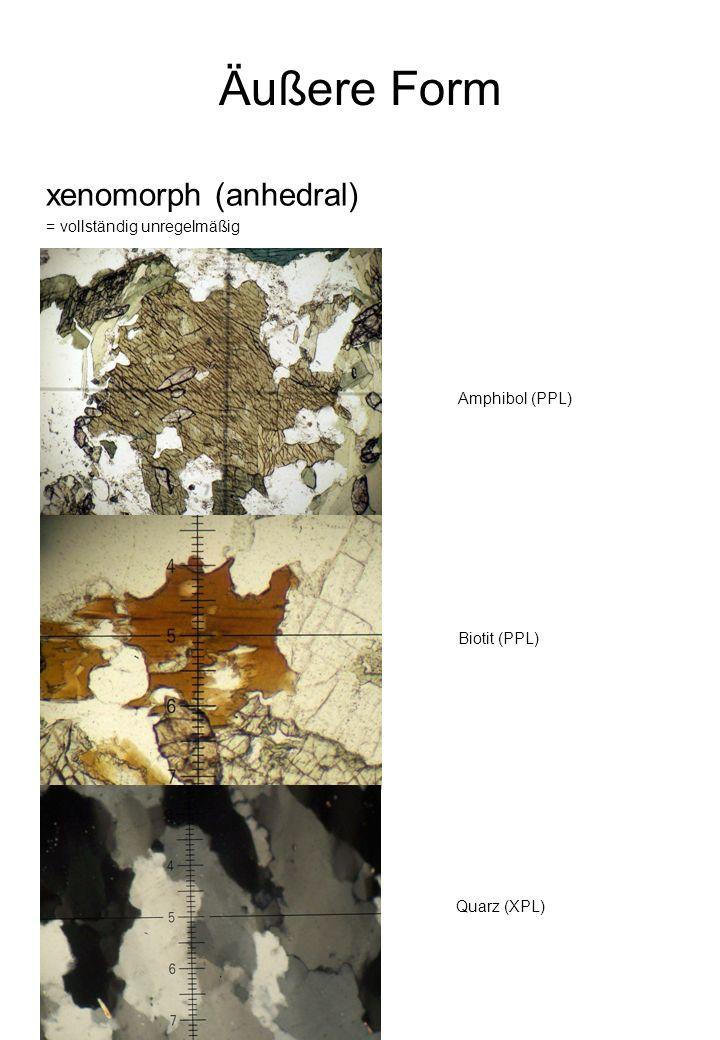Äußere Form xenomorph (anhedral) = vollständig unregelmäßig Quarz (XPL) Biotit (PPL) Amphibol (PPL)