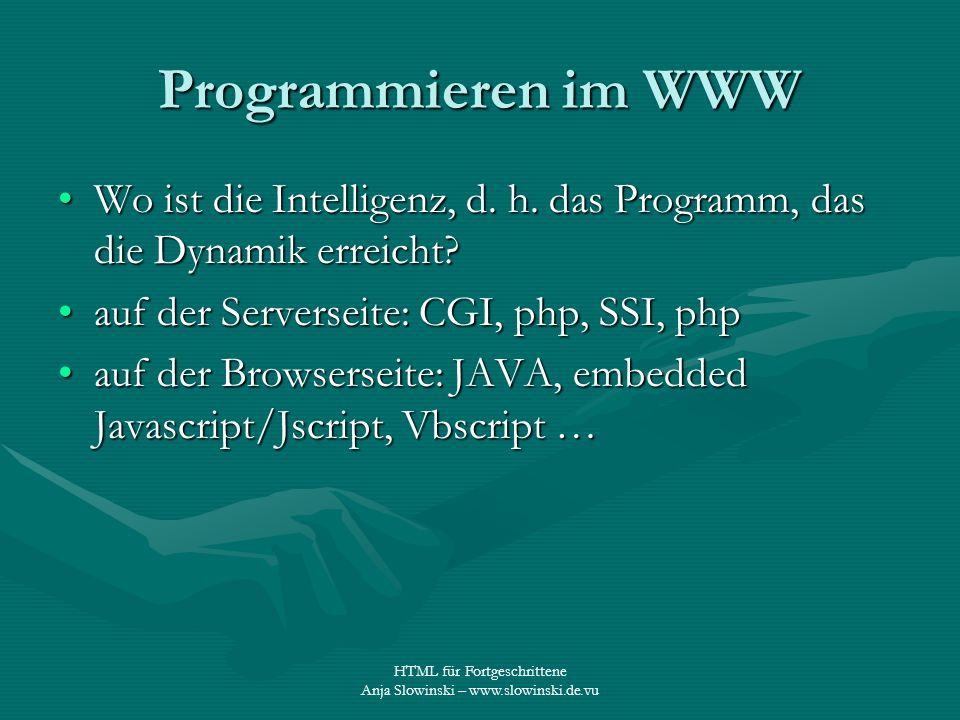 HTML für Fortgeschrittene Anja Slowinski – www.slowinski.de.vu Programmieren im WWW Wo ist die Intelligenz, d. h. das Programm, das die Dynamik erreic