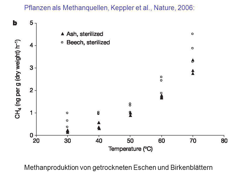 Methanproduktion von getrockneten Eschen und Birkenblättern Pflanzen als Methanquellen, Keppler et al., Nature, 2006: