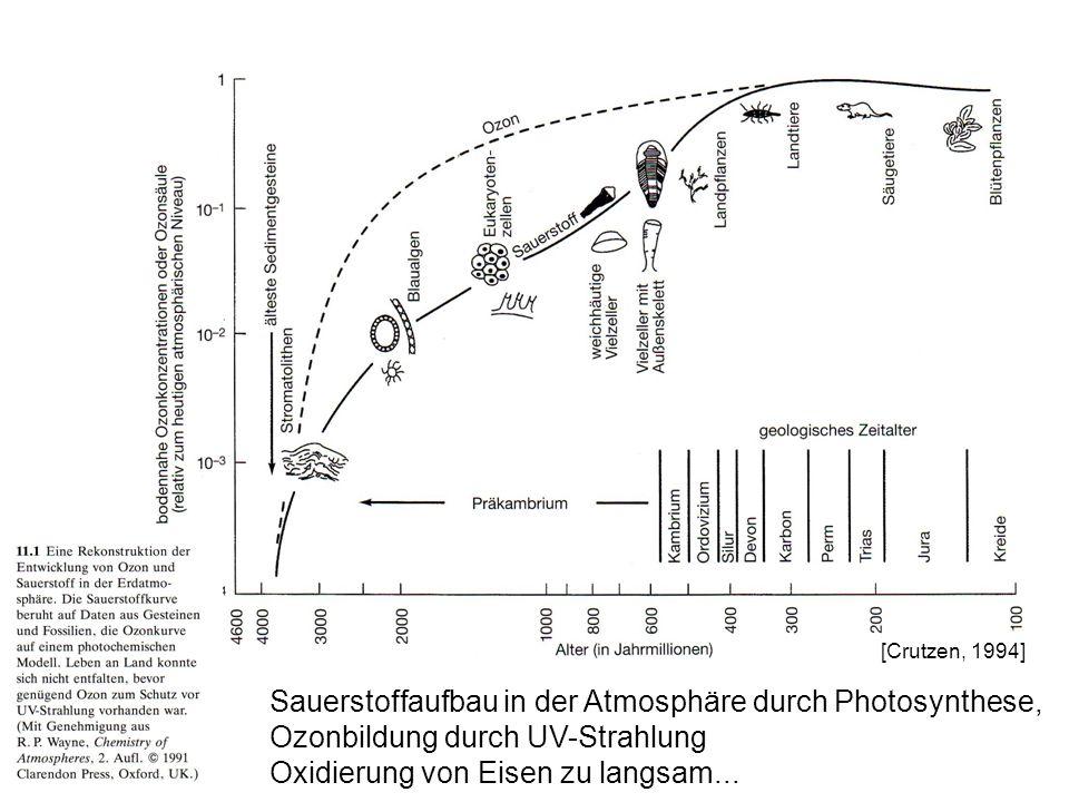 Sauerstoffaufbau in der Atmosphäre durch Photosynthese, Ozonbildung durch UV-Strahlung Oxidierung von Eisen zu langsam... [Crutzen, 1994]