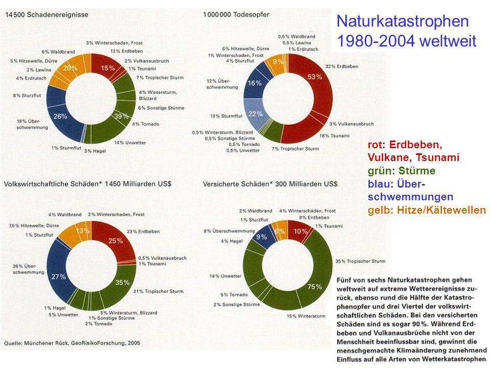 Naturkatastrophen 1980-2004 weltweit rot: Erdbeben, Vulkane, Tsunami grün: Stürme blau: Über- schwemmungen gelb: Hitze/Kältewellen