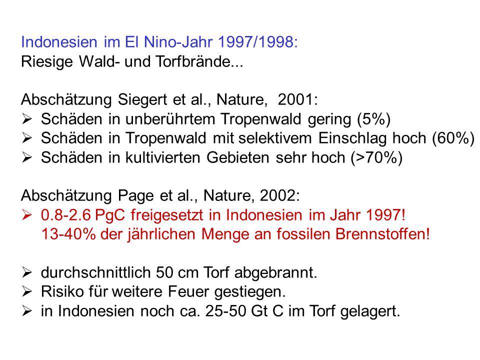 Indonesien im El Nino-Jahr 1997/1998: Riesige Wald- und Torfbrände... Abschätzung Siegert et al., Nature, 2001: Schäden in unberührtem Tropenwald geri