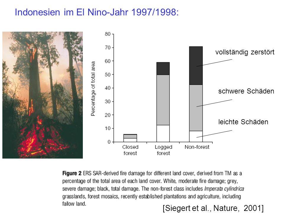 vollständig zerstört schwere Schäden leichte Schäden [Siegert et al., Nature, 2001]