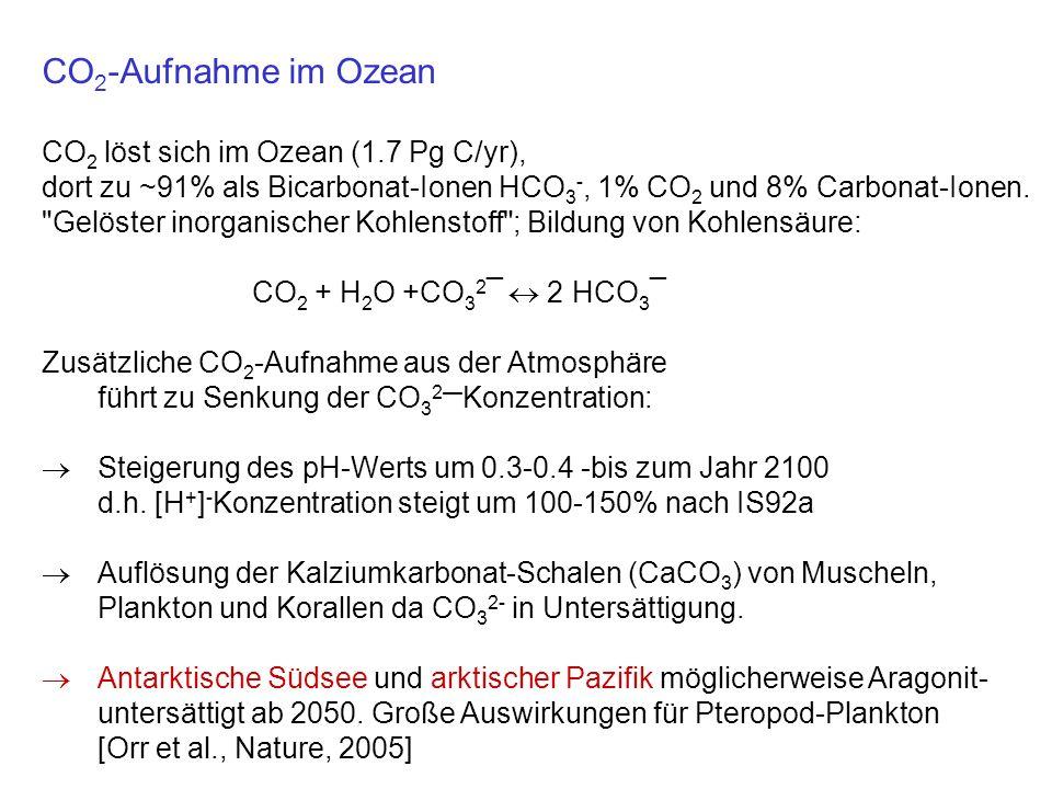 CO 2 -Aufnahme im Ozean CO 2 löst sich im Ozean (1.7 Pg C/yr), dort zu ~91% als Bicarbonat-Ionen HCO 3 -, 1% CO 2 und 8% Carbonat-Ionen.