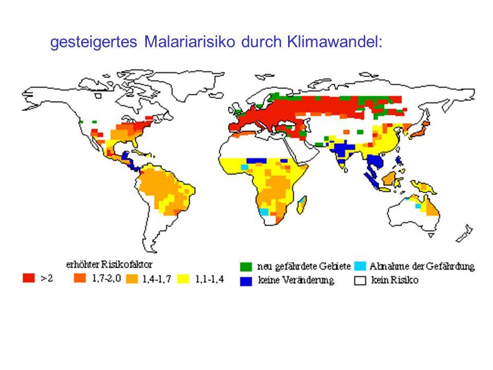 gesteigertes Malariarisiko durch Klimawandel: